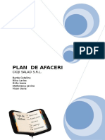 Plan de Afaceri (Repaired)