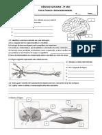 Ficha Neurohormonal 14-15