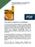 GRANDES PROPIEDADES DE LA CURCUMA.docx