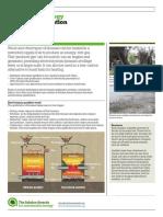 ashden_biomas_gasification.pdf