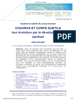 Chakras Et Subtils