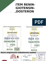 Sistem Renin Angiotensin Aldosteron