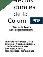 Defectos de Columna 2015