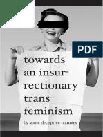Some Deceptive Trannies - Towards an Insurrectionary Transfeminism