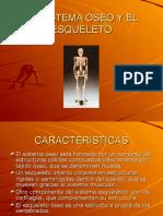 elsistemaoseoyelesqueleto-091117134027-phpapp02