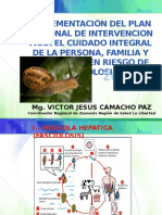 diapositivas vititor.pptx