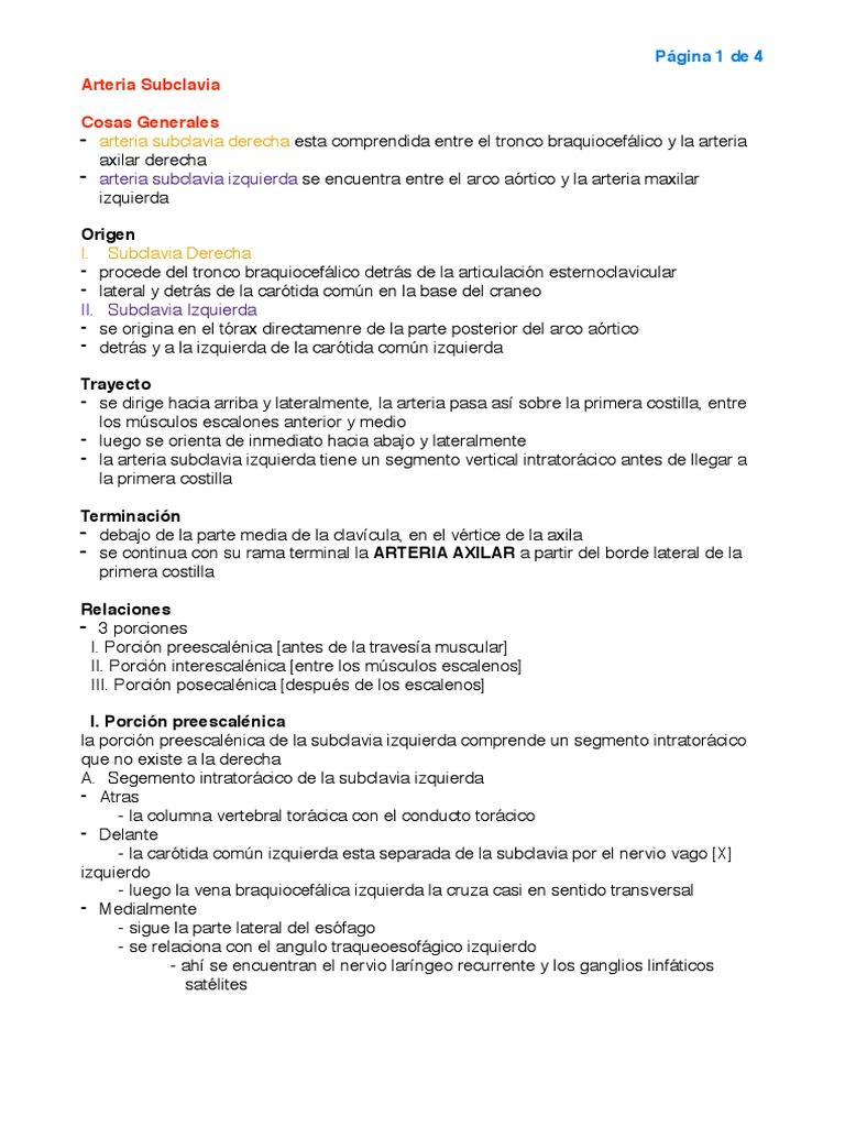 Arteria Subclavia Resume (Latarjet)