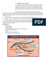 DNA Replication Project.docx