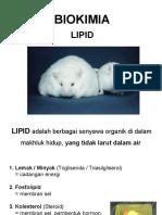 7. Lipid