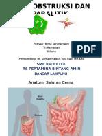 Patofisiologi Ileus Obs