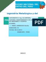 Informe Alcantara