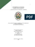 EVALUACION DEL IMPACTO AMBIENTAL EN UNA GRANJA DE PRODUCCIÓN PORCINA (Provincia Warnes, Dpto. Santa Cruz)