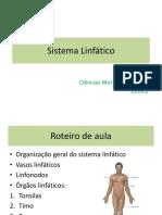 Aula 03 Anatomia Do Sistema Linfático