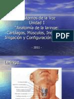 Trastornos de La Voz Clase 2