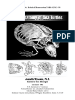 Wyneken, 2001 the Anatomy of Sea Turtles