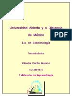 TER_U3_EA_CLDM