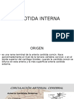 CAROTIDA INTERNA.pptx