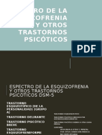 Esquizofrenia y Trastornos Psicóticos
