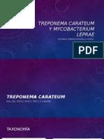 Treponema Carateum y Mycobacterium Leprae