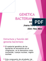 GENETICbac.ppt