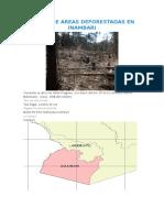 Mapeo de Areas Deforestadas en Inambari