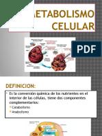 EL METABOLISMO CELULAR 2016.pptx