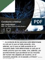 Conducta Criminal