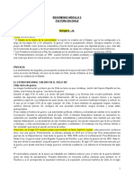 Resume Nes Cultura en Chile