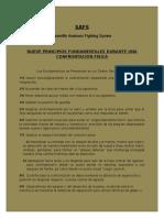 Principios y Fundamentos SAFS