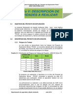 5_Descripcion_Actividades_Realizar.pdf