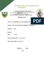 REACCIONES DE LOS CATIONES DEL GRUPO II.doc