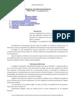 Corrientes Hermeneuticas