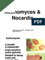 17._Actinomyces_Nocardia