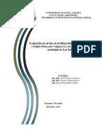 Protocolo Proyecto Maiz, Frijo 19 de Enero