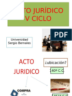 Universidad Sergio Bernales - Acto Juridico