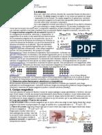 F4.2 3 CampoMagnético Teoría