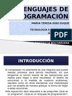 Presentacionde_visualbasic_lenguajes.pptx