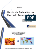 Matriz de Selección de Mercado Internacional