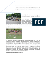 Impacto de Las Mediads Ambientales Nacionales