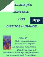 14 - Declaração Universal Dos Direitos Humanos