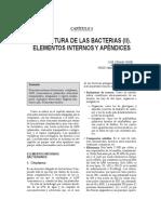 Estructura de Las Bacterias (2) - Elementos Internos y Apendices