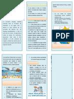 243599986-TRIPTICO-MAR-PERUANO-docx.docx