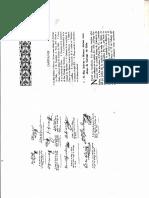 Verdaguer Cap. XX.pdf