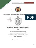 SISTEMAPENITENCIARIODELAREINSERCION.pdf