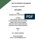 Resumen Informe Coso y Tipos de Riesgo