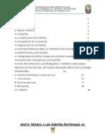 Informe Puentes Peatonales Av. Chiclayo