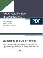 flujo multifasico tridimensional