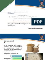 S- PRESENTACION 2- L JAIMES.pptx