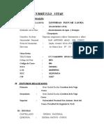 CURRICULO  VITAE LEO  VIALES.doc