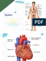 0 Cardiovascular Emergency